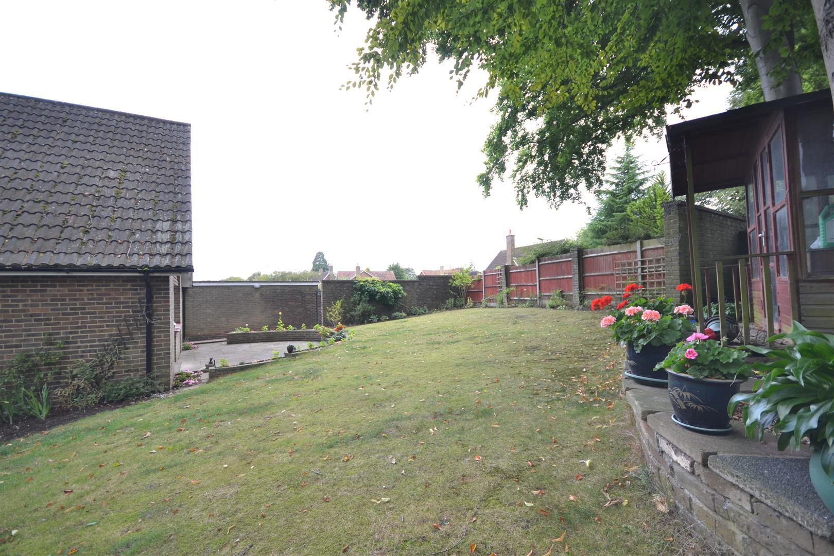 treadwell road garden 3.JPG